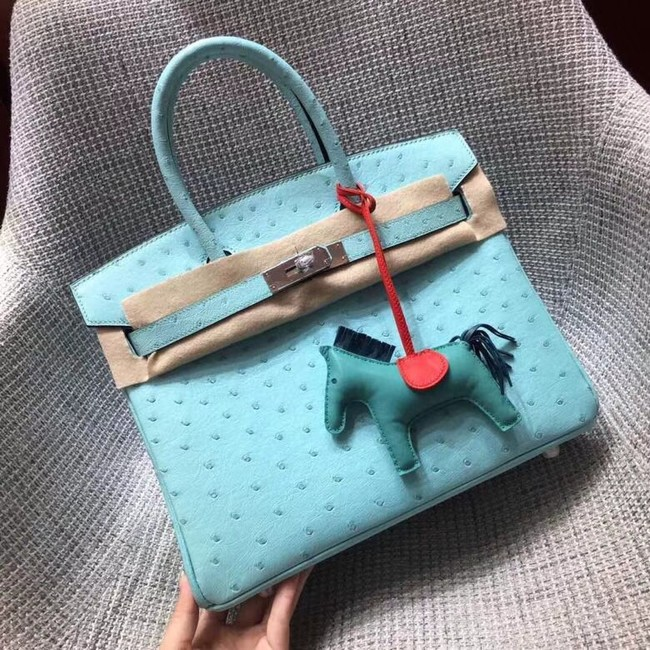 Hermes Real ostrich leather birkin bag BK35 sky blue